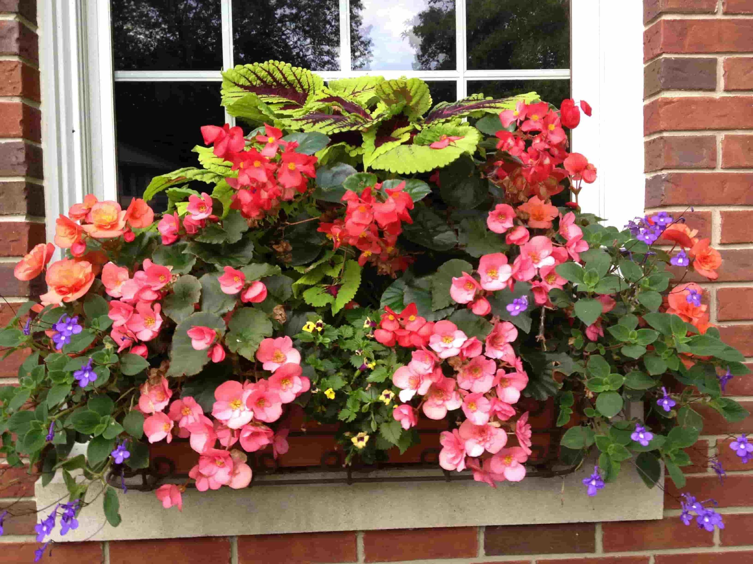 25 Ideas to Remodel an Open Loggia Furniture, Plants, Protection From Precipitation